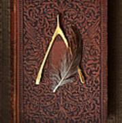 Wishbone And Feather On Antique Book Poster