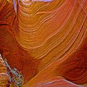 Wispy Relic In Lower Antelope Canyon In Lake Powell Navajo Tribal Park-arizona   Poster