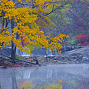 Wissahickon Morning In Autumn Poster