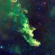 Witch Head Nebula Poster by Georgia Fowler