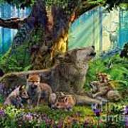 Wolf And Cubs In The Woods Poster
