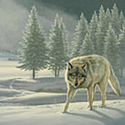 Wolf In Fog    Poster