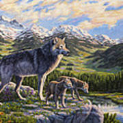 Wolf Painting - Passing It On Poster by Crista Forest