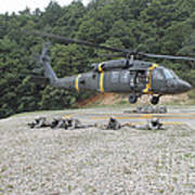 Wolfhounds Air Assault From A Uh-60 Poster