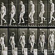 Woman Descending Steps Poster by Eadweard Muybridge