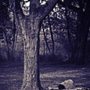 Woman Under A Tree Poster