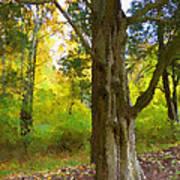 Wondrous Tree Poster
