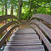 Wood Bridge Poster