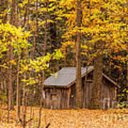 Wooden Cabin In Autumn Poster