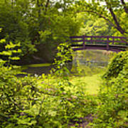 Wooden Foot Bridge Poster