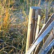 Wooden Post And Fence At The Beach Poster