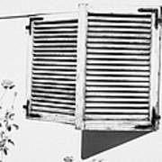 wooden sun shutter blinds on windows of house with roses in the garden in tacoronte Tenerife Canary Islands Spain Poster