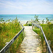 Wooden Walkway Over Dunes At Beach Poster