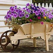Wooden Wheelbarrow Full Of Flowers Poster