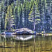 Woods Lake 1 Poster