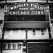 Wrigley Field Chicago Cubs Sign In Black And White Poster