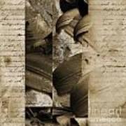 Written IIi Poster