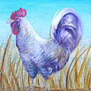 Wyandotte Rooster Poster