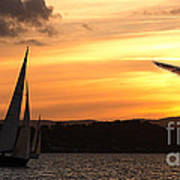 Yacht And Seagull Sunset Poster