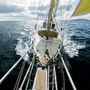 Yacht Sailing On The Southern Ocean Poster