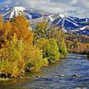 Yampa River Fall Poster