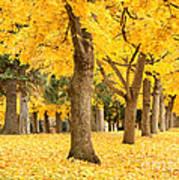 Yellow Autumn Wonderland Poster
