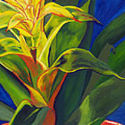 Yellow Bromeliad Poster
