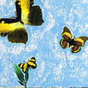 Yellow Butterflies - Spring Art By Sharon Cummings Poster