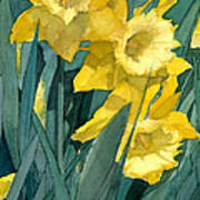 Watercolor Painting Of Blooming Yellow Daffodils Poster