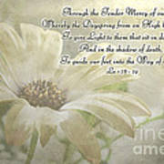 Yellow Daisy Photoart  With Verse Poster
