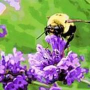 Yellow Enjoying Lavender Poster