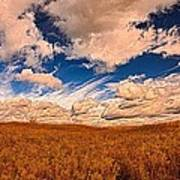 Yellow Field Dramatic Sky Poster