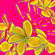 Yellow Flowers On Pink Background Poster