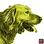 Yellow Golden Retriever - 4047 Fs Poster