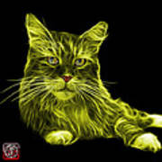 Yellow Maine Coon Cat - 3926 - Bb Poster