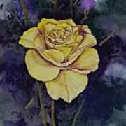 Yellow Rose Poster