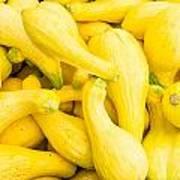 Yellow Squash At The Market Poster