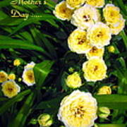 Yellow Tea Rose  Happy Mother's Day Poster