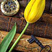 Yellow Tulip On Old Books Poster