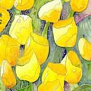 Yellow Tulips 2 Poster