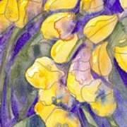 Yellow Tulips 3 Poster