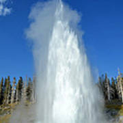 Yellowstone Grand Geyser Shooting Up High Poster