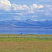 Yellowstone Lake In Yellowstone National Park-wyoming- Poster