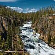 Yellowstone National Park Lewis River Poster