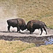 Yellowstone Turf War Poster