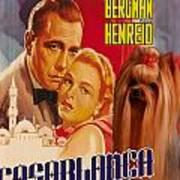 Yorkshire Terrier Art Canvas Print - Casablanca Movie Poster Poster