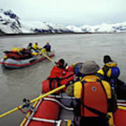 Young Adults Rafting On Alsek River Poster