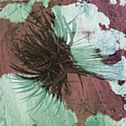 Yucca Abstract Sage And Mauve Poster