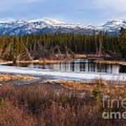 Yukon Taiga Wetland Marsh Spring Thaw Canada Poster