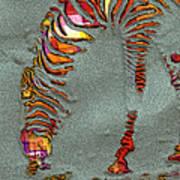 Zebra Art - 64spc Poster